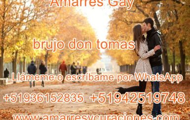 lolisto.com